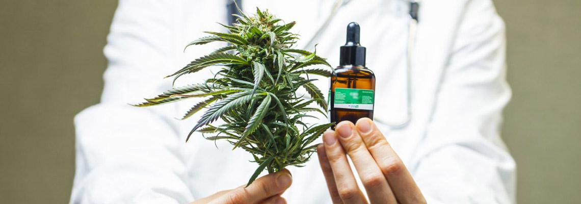 vertus du cannabis médical